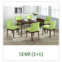 SEMI (1+6)